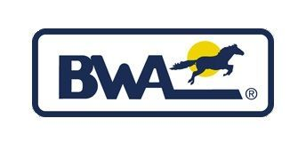 Cantiere BWA
